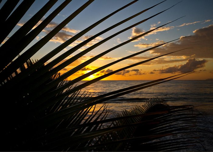 Puerto Rico Greeting Card featuring the photograph Puerto Rican Sunset IIi by Tim Fitzwater