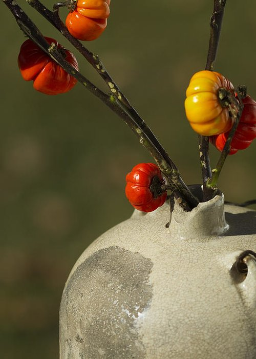 Solanum Integrifolium Greeting Card featuring the photograph Pumpkin On A Stick In An Old Primitive Moonshine Jug by Kathy Clark