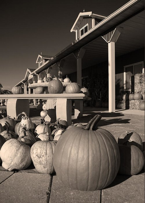 Pumpkins Greeting Card featuring the photograph Pumpkins At The Farm Market October by Tony Ramos