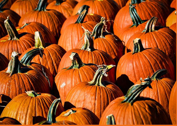 Agriculture Greeting Card featuring the photograph Pumpkins Galore by Julie Palencia
