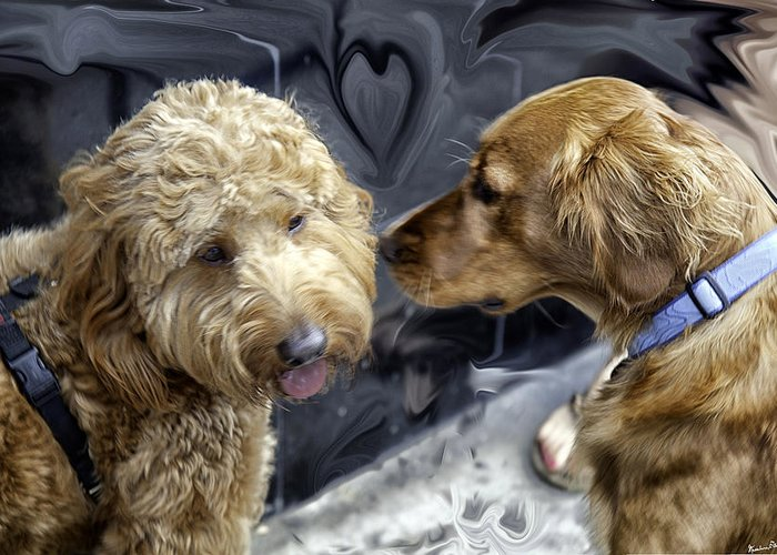 Dogs Greeting Card featuring the photograph Puppy Love by Madeline Ellis