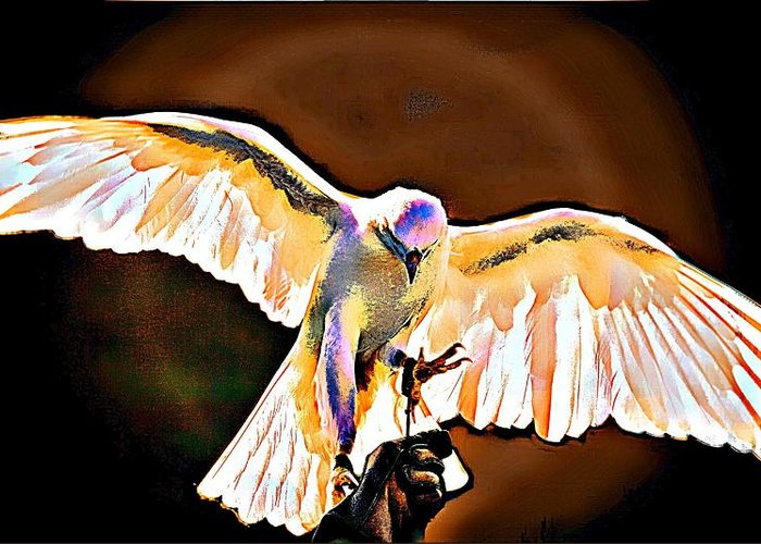 Birds Of Prey Greeting Card featuring the digital art Pure Whtie Raptor by Carrie OBrien Sibley