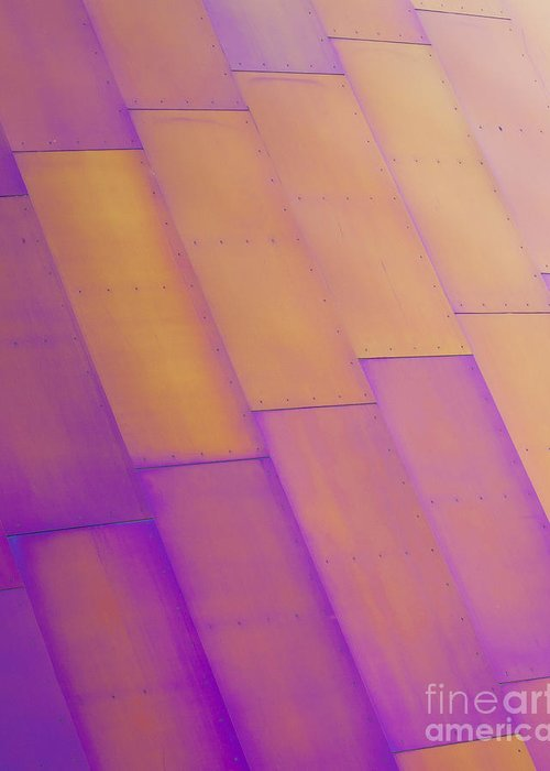 Purple Greeting Card featuring the photograph Purple Orange I by Chris Dutton