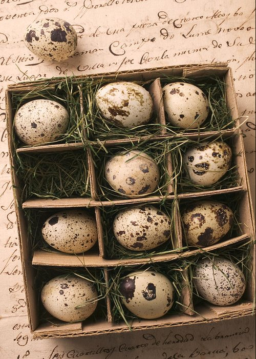Quail Egg Greeting Card featuring the photograph Quail Eggs In Box by Garry Gay