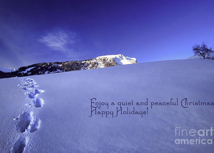 Winter Greeting Card featuring the photograph Quiet And Peaceful Christmas by Sabine Jacobs