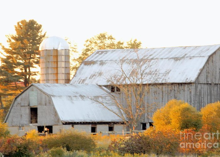 Barn Greeting Card featuring the photograph Quiet Country by Joe Jake Pratt