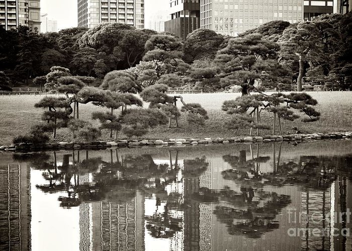 Tokyo Greeting Card featuring the photograph Quiet Moment In Tokyo by Carol Groenen