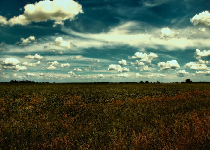 Field Greeting Card featuring the photograph Raging Midnight Field by Bill Tiepelman