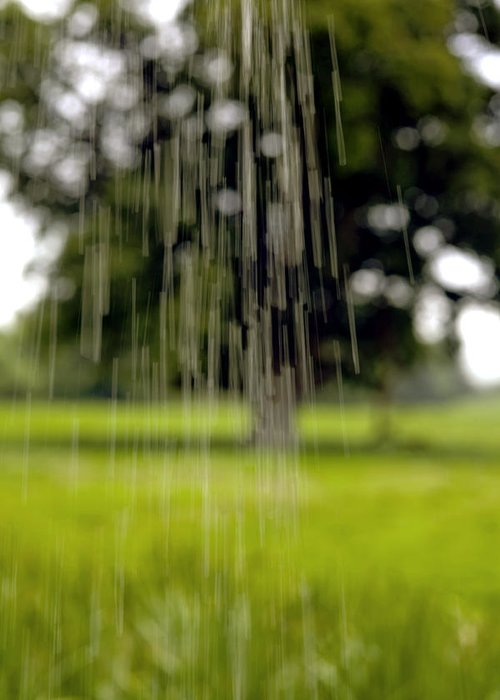 Rain Greeting Card featuring the photograph Rain Falling by Dr Keith Wheeler