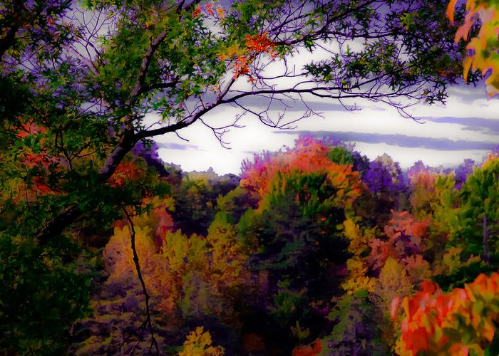 Smoky Mountains Greeting Card featuring the photograph Rainbow Treetops by DigiArt Diaries by Vicky B Fuller