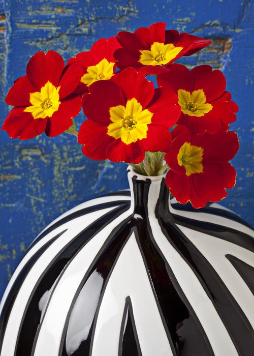 Red Greeting Card featuring the photograph Red And Yellow Primrose by Garry Gay
