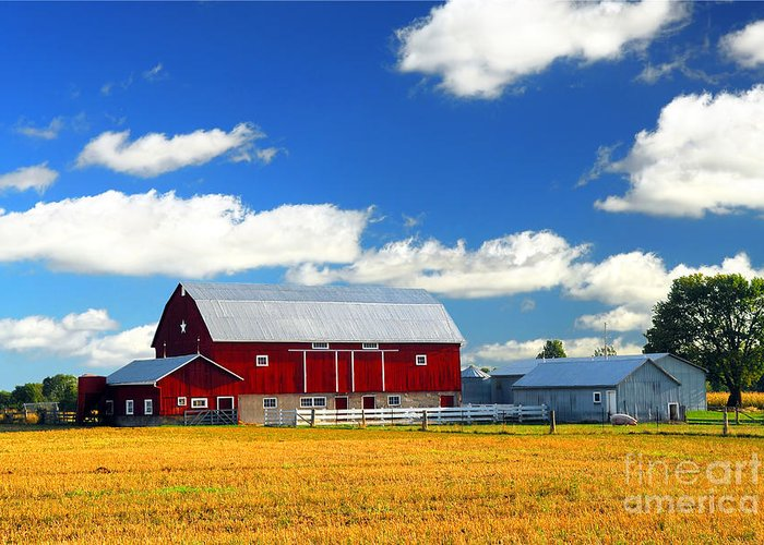 Landscape Greeting Card featuring the photograph Red Barn by Elena Elisseeva