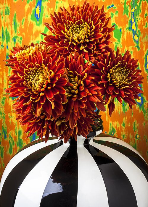 Red Yellow Spider Greeting Card featuring the photograph Red Mums In Striped Vase by Garry Gay