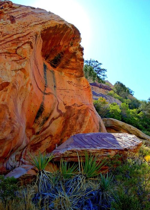 Red Rock Canyon Greeting Card featuring the photograph Red Rock Canyon 46 by Randall Weidner