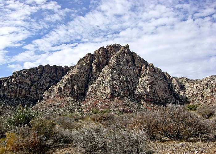 Red Rock Canyon Greeting Card featuring the photograph Red Rock Canyon - Nevada by Cheryl Colaw