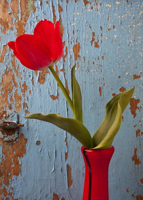 Red Greeting Card featuring the photograph Red Tulip Bending by Garry Gay