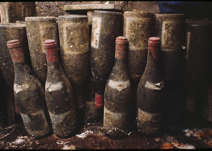 Indoor Greeting Card featuring the photograph Red Wine Bottles, Covered With Mold by James L. Stanfield