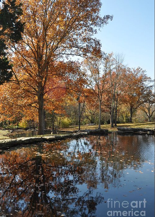 Cheekwood Gardens Greeting Card featuring the photograph Reflection In The Water by Denise Ellis