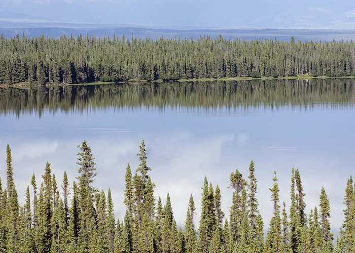 Lakes Greeting Card featuring the photograph Reflection In Willow Lake Near Copper by Rich Reid