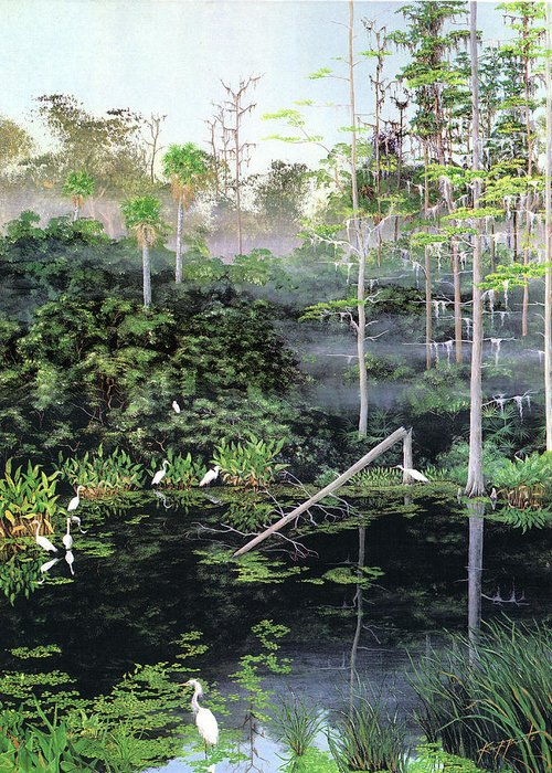 Egrets Greeting Card featuring the painting Reflections 1 by Kevin Brant