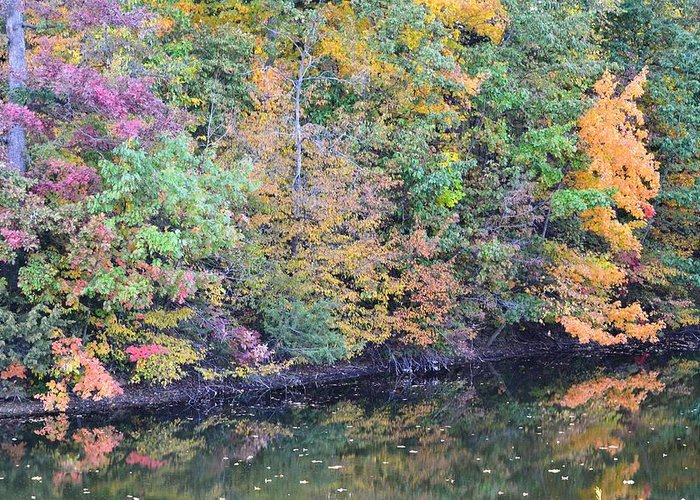 Fall Greeting Card featuring the photograph Reflections Of A Tapestry 2 by Kim Hymes
