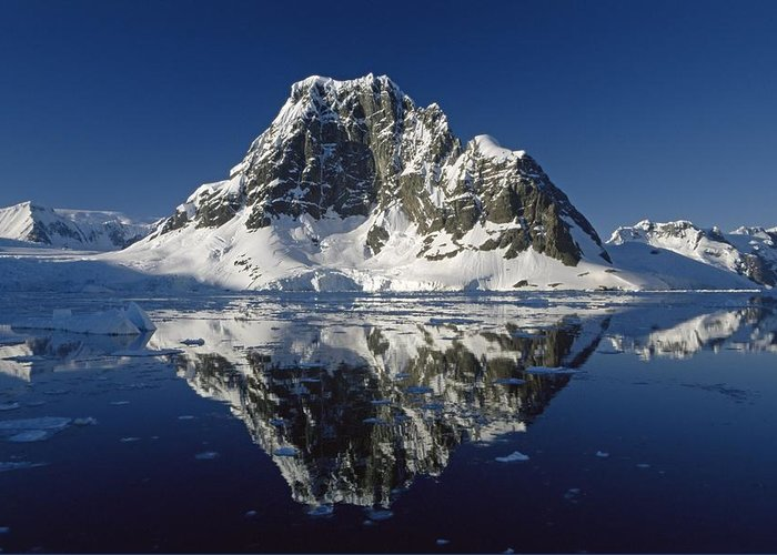 Landscape; Seascape; Reflection; Rocky; Rocks; Rock; Coast; Coastal; Shore; Ice; Icy; Mountain; Mountainous; Dramatic; Picturesque; Cliff; Cliffs; Glacier; Still; Calm; Scenic; View; Blue Sky; Reflected; Peak; Remote; South Pole Greeting Card featuring the photograph Reflections With Ice by Antarctica