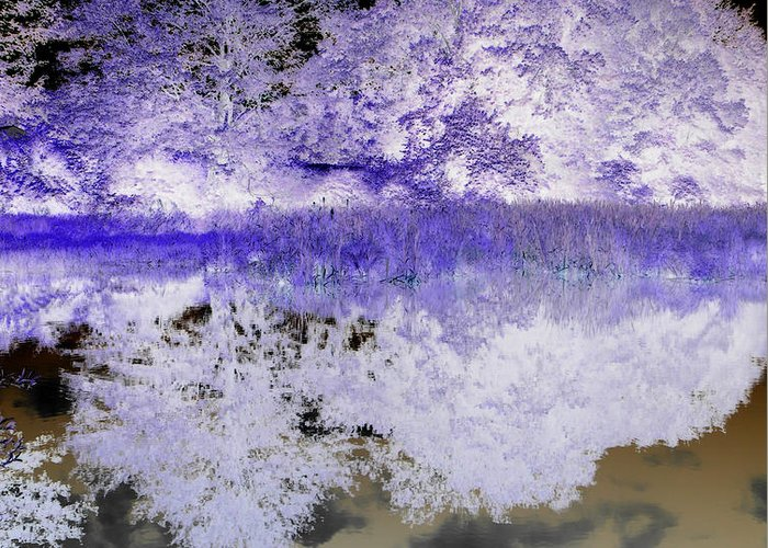 Abstract Photography Greeting Card featuring the photograph Reflective Abstracts by Kim Galluzzo Wozniak