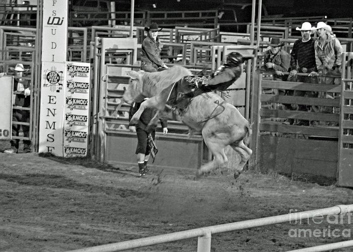 Bull Riding Greeting Card featuring the photograph Ride 'em Cowboy by Shawn Naranjo