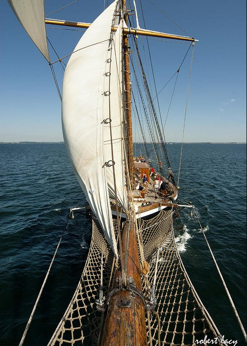 Tall Ships Greeting Card featuring the photograph Riding The Breeze by Robert Lacy