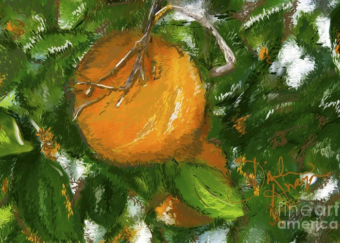 Orange Greeting Card featuring the photograph Rio Grande Valley Oranges by Dinah Anaya