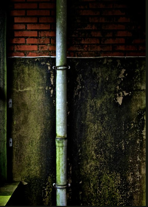 Damp Greeting Card featuring the photograph Rising Damp by Odd Jeppesen