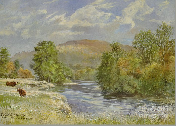 Landscape; River Scene; Highland Cattle; Meadow; Pastoral; Scottish; Hill; Hills; Tree; Trees; River Spey; Kinrara; Bull; Bulls; River; Water; Birds; Blue Sky; Sky Greeting Card featuring the painting River Spey - Kinrara by Tim Scott Bolton