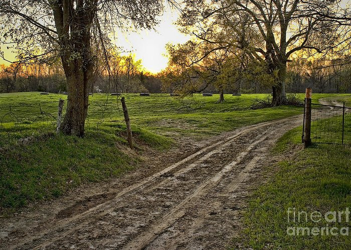 Farm House Greeting Card featuring the photograph Road Less Traveled by Cris Hayes