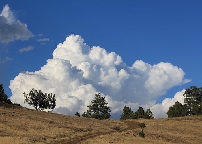 Cloud Greeting Card featuring the photograph Road To The Clouds by Amara Roberts