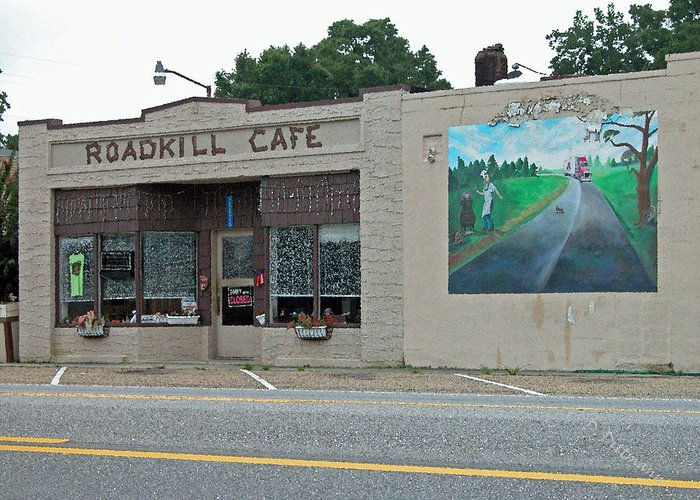 Roadkill Greeting Card featuring the photograph Roadkill Cafe by David Dittmann