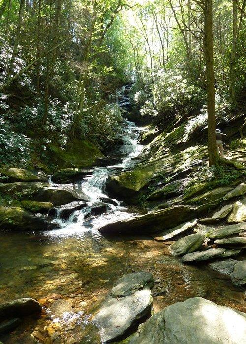 Roaring Creek Falls Greeting Card featuring the photograph Roaring Creek Falls - II by Joel Deutsch