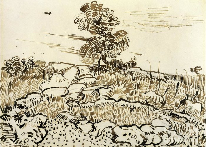 Rocky Greeting Card featuring the painting Rocky Ground At Montmajour by Vincent van Gogh
