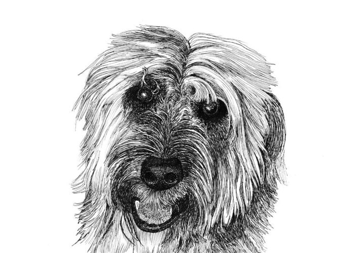 Pen And Ink Art Of Rocky Whose Owner Greeting Card featuring the drawing Rocky by Jack Pumphrey