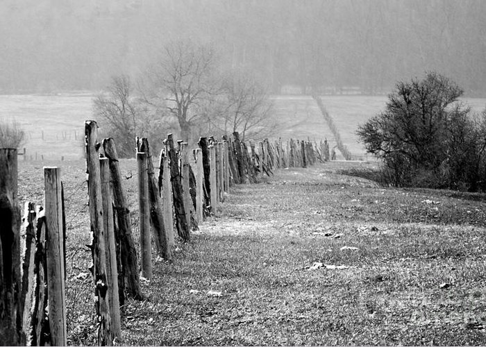 Fence Greeting Card featuring the photograph Rolling Fence by Chad Bennett
