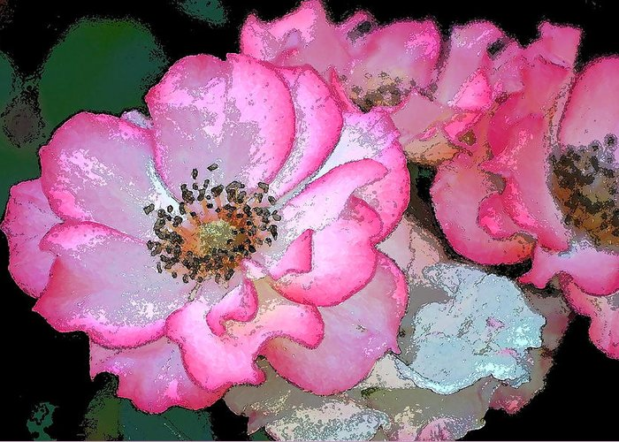 Floral Greeting Card featuring the photograph Rose 129 by Pamela Cooper