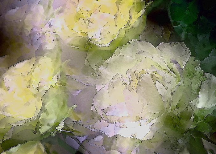 Floral Greeting Card featuring the photograph Rose 151 by Pamela Cooper