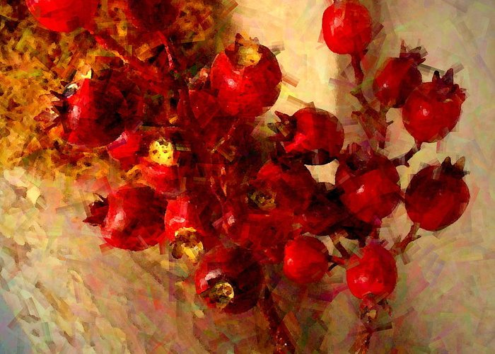Botanical Greeting Card featuring the photograph Rosehips by Christine S Zipps