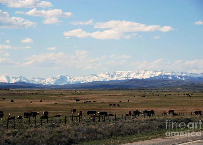 Mountains Greeting Card featuring the photograph Rural Wyoming - On The Way To Jackson Hole by Susanne Van Hulst
