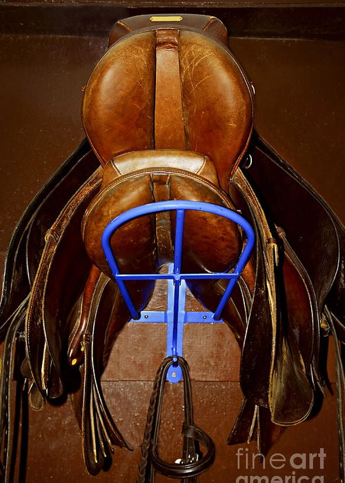 Saddle Greeting Card featuring the photograph Saddles by Elena Elisseeva
