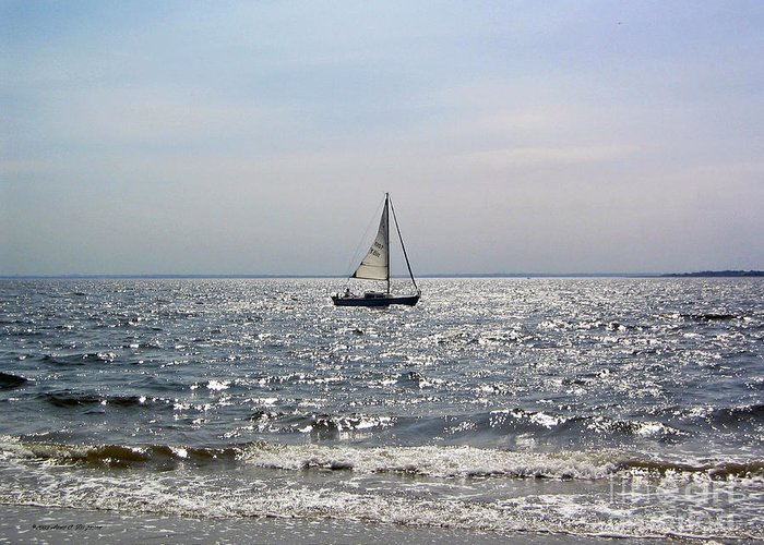 Sailboat Greeting Card featuring the photograph Sail Alone by Anne Ferguson