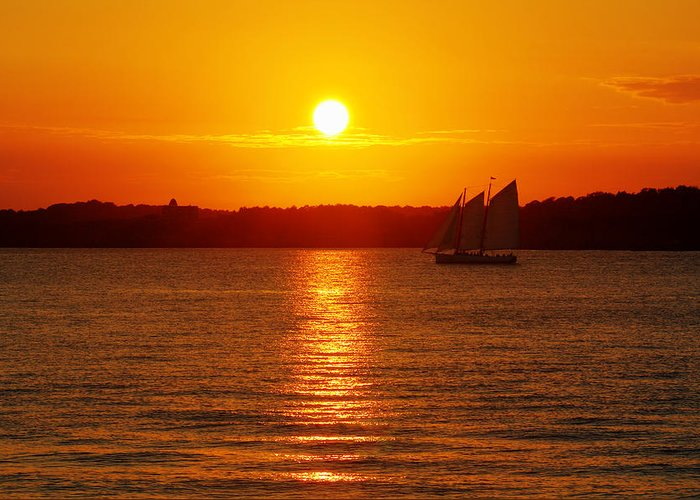 Sail Greeting Card featuring the photograph Sail Off Into The Sunset by Andrew Pacheco
