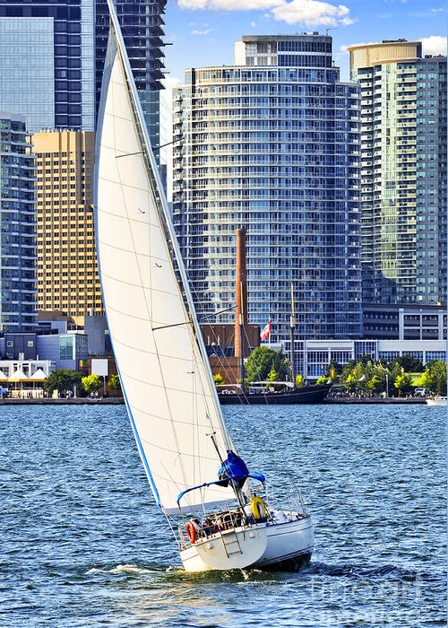 Harbor Greeting Card featuring the photograph Sailboat In Toronto Harbor by Elena Elisseeva