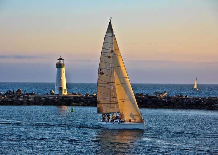 Randy Wehner Greeting Card featuring the photograph Sailing by Randy Wehner Photography