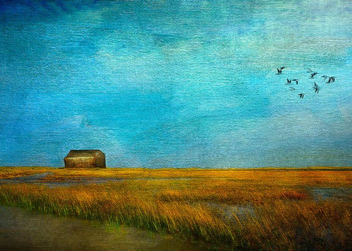 Sea Greeting Card featuring the mixed media Salt Marsh by Michael Petrizzo