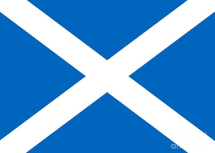 Saltire Greeting Card featuring the photograph Saltire by Steev Stamford